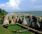 Tam Giang lagoon travel information - www.huetraveltour.com